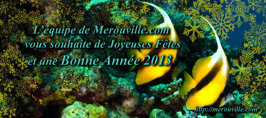 Merouville.com vous présente ses Meilleurs Voeux pour 2013