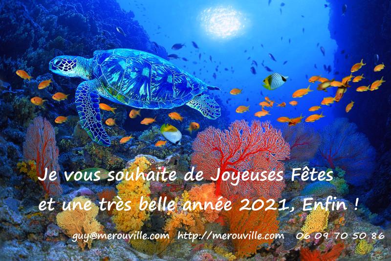 Bonne Année 2021 - Mérouville